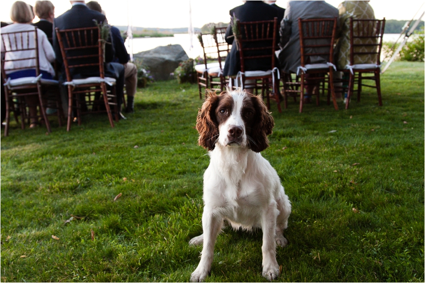 Brides-Best-Friend-Dogs-in-Weddings-CT-Wedding-Photographer-Jeff-Lundstrom-Photography_0003